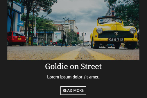 jQuery effect fadeTo() Method and CSS3 image Hover Effect